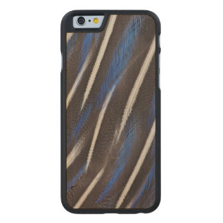Vulturine Guineafowl feather Carved Maple iPhone 6 Case