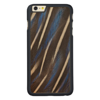 Vulturine Guineafowl feather Carved® Maple iPhone 6 Plus Case