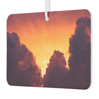w in weather air freshener