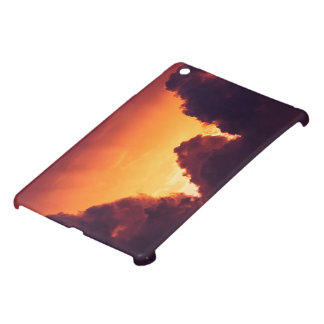 w in weather iPad mini cover