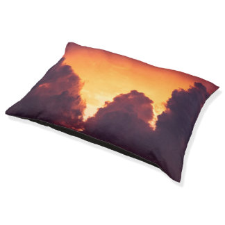 w in weather pet bed