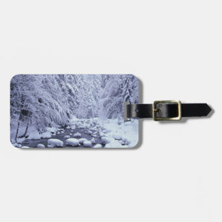 WA, Mount Baker-Snoqualmie National Forest, Luggage Tag