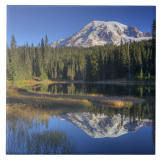WA, Mt. Rainier National Park, Mt. Rainier Tile
