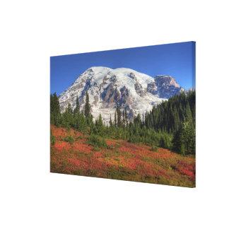WA, Mt. Rainier National Park, Paradise Valley Canvas Print