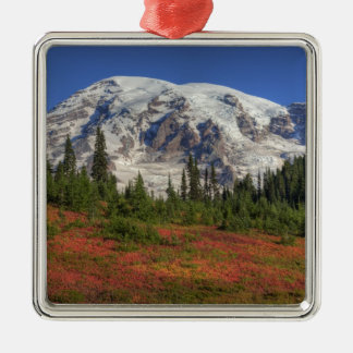 WA, Mt. Rainier National Park, Paradise Valley Metal Ornament