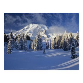 WA, Mt. Rainier NP, Mt. Rainier and Paradise Postcard