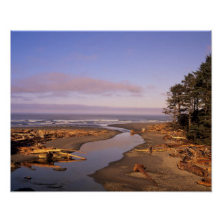 WA, Olympic NP, Kalaloch Beach and Kalaloch Poster