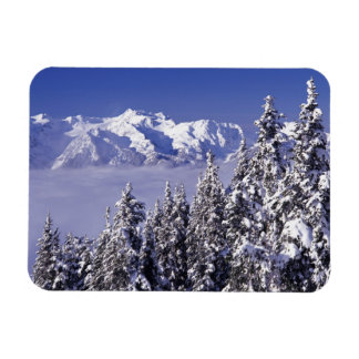 WA, Olympic NP, Olympic Mountain Range, view Rectangular Photo Magnet
