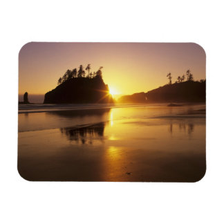 WA, Olympic NP, Second Beach at sunset Rectangular Photo Magnet