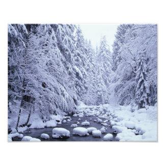 WA réserve forestière de Boulanger-Snoqualmie de Impression Photo