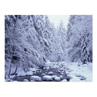 WA réserve forestière de Boulanger-Snoqualmie de Carte Postale