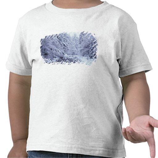 WA, réserve forestière de Boulanger-Snoqualmie de  T-shirt