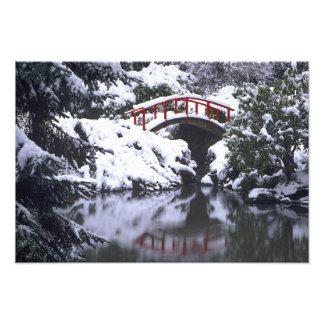 WA, Seattle, Moon bridge and pond after winter Art Photo