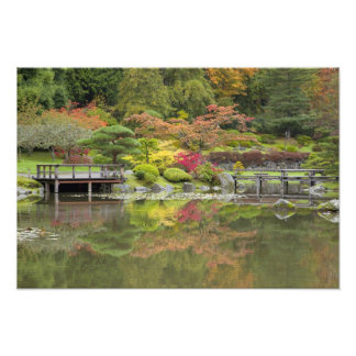 WA, Seattle, Washington Park Arboretum, 3 Photograph