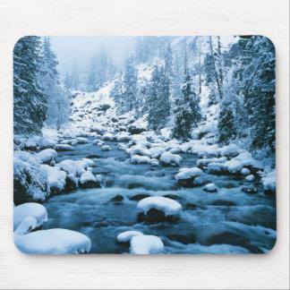 WA, Wenatchee National Forest, Cascade Mouse Pad