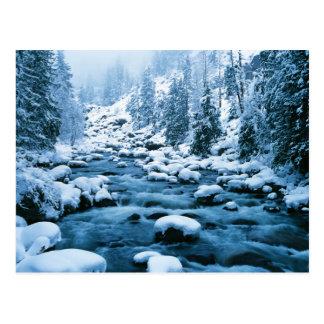 WA, Wenatchee National Forest, Cascade Postcard