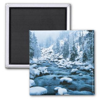 WA, Wenatchee National Forest, Cascade Square Magnet