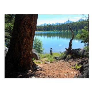 Wabasso Lake Postcard