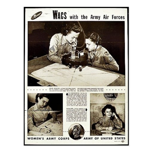 Wacs With The Army Air Forces Postcards