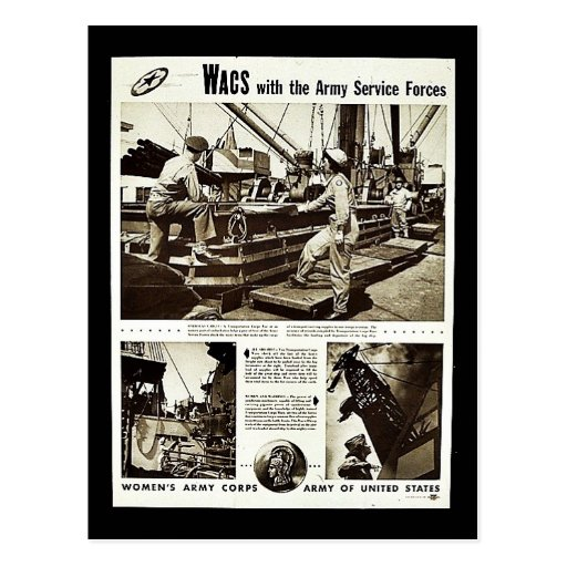 Wacs With The Army Service Forces Postcards
