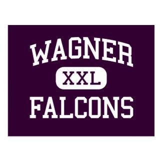 Wagner - Falcons - High - Staten Island New York Postcard