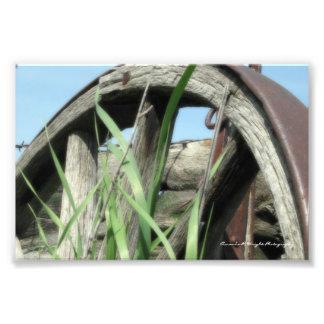 Wagon Wheel Print