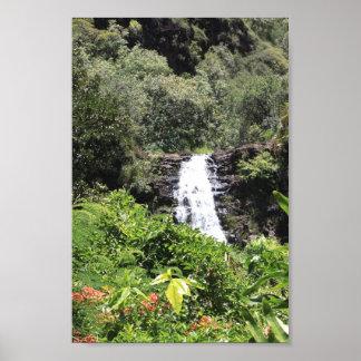 Waimea Falls Poster