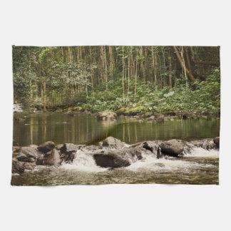 Waipio Stream Reflection Kitchen Towels