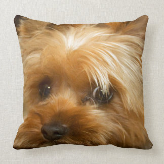 Wait for mom love  haley dog yorkie terrier throw pillow