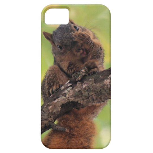 Wait! Let me fix my whiskers! iPhone 5 Cover