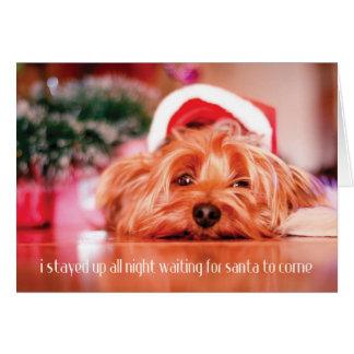 Waiting for Santa Blank Greeting Card