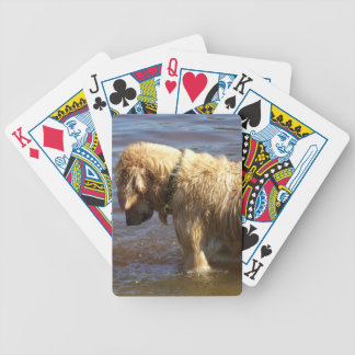 Waiting Golden Bicycle Playing Cards