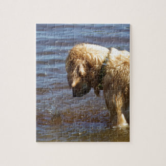 Waiting Golden Jigsaw Puzzle