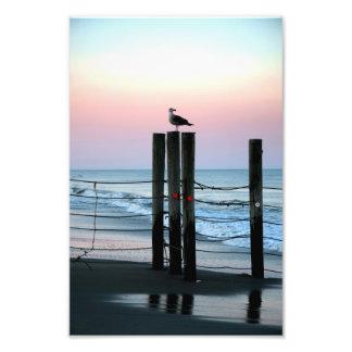Waiting On Sunset Photo Print