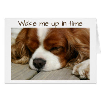 """""""WAKE ME UP IN TIME"""" BIRTHDAY GREETING CARD"""