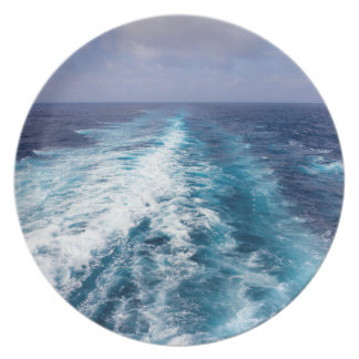 wake of a cruise ship plate