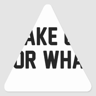 Wake Up For What Triangle Sticker