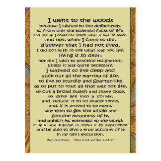 Walden Life in the Woods Postcard