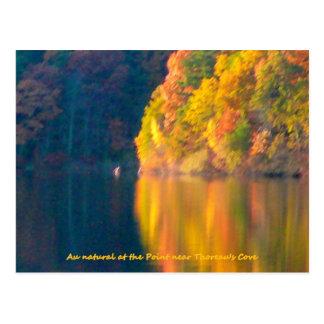 Walden Pond autumn foliage post card