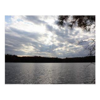 Walden Pond Postcard