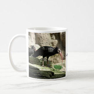 Waldrapp ibis Black Feathered Bird Mug
