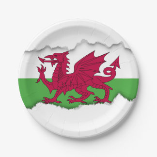 Wales Flag Paper Plate