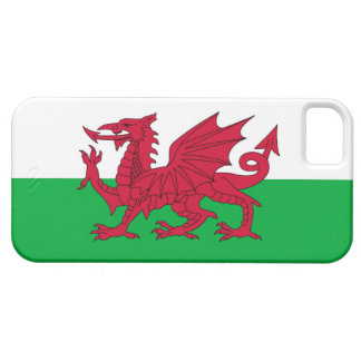 WALES iPhone 5 CASE