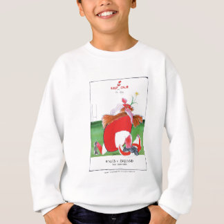 wales v england balls - from tony fernandes sweatshirt