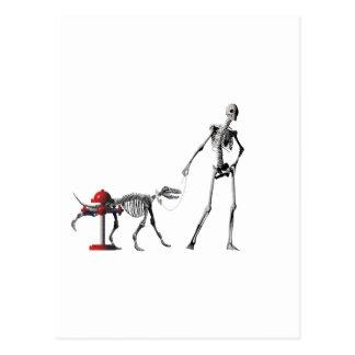 walk dog postcard