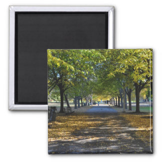 Walk in the park Square Magnet