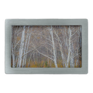 Walk In The Woods Belt Buckles