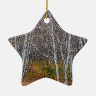 Walk In The Woods Ceramic Star Ornament