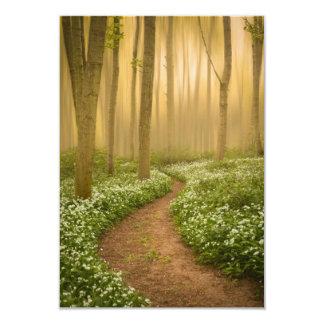 Walk in the Woods Invitation