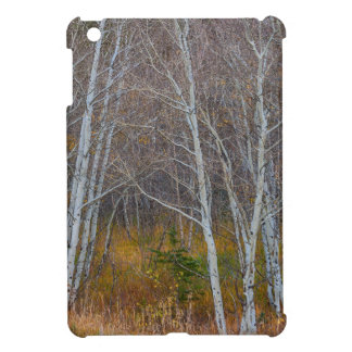 Walk In The Woods iPad Mini Cases